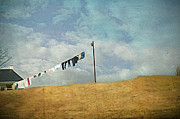 Clothes Pins Photos - Drying On The Hill by Kathy Jennings