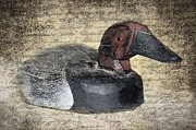 Antique Digital Art Prints - Duck Decoy Print by Betty LaRue