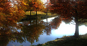 Duck Pond In The Fall Print by Rebecca Lynn Roby