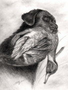 Dogs Drawings Posters - Duck Season Poster by Kathleen Kelly Thompson