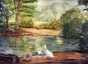 Ducks Paintings - Ducks at Wickham by Katherine  Berlin
