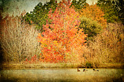 Joan McCool - Ducks in an Autumn Pond