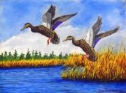 Ducks Paintings - Ducks Landing in a Marsh by William Tremble