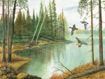 Ducks Paintings - Ducks Landing On Lake by Samuel Showman