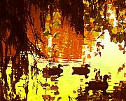 Duck Pond Prints - Ducks on Lake Red Light Print by Amy Vangsgard