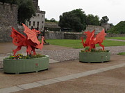 Castle Photo Originals - Dueling Dragons by Ian Kowalski
