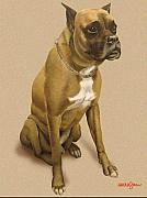 Boxer Dog Mixed Media - Duke by Harold Shull