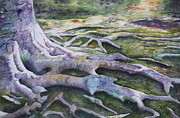 Dunbar Cave Roots  Print by Patsy Sharpe