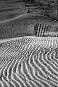 Sand Fences Prints - Dune Patterns Print by Steven Ainsworth