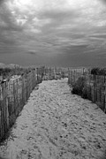 Carolyn Stagger Cokley Art - Dune Walk 758 BW by Carolyn Stagger Cokley