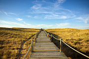 Weathered Photo Posters - Dune Walkway Poster by Carlos Caetano