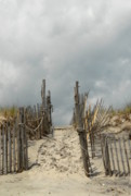 Lbi  Photographs Prints - Dunes 8 Print by Joyce StJames