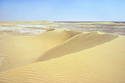 Qatar Metal Prints - Dunes and sabkha Metal Print by Paul Cowan