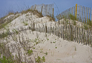 Topsail Island Framed Prints - Dunes I Framed Print by Betsy A Cutler East Coast Barrier Islands