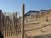 Dunes Print by Kathy Benton