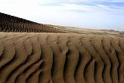 Sand Dunes Metal Prints - Dunes of Alaska Metal Print by Anthony Jones