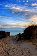 Dunes On The Cape Print by Joann Vitali