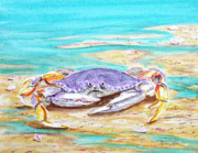Sealife And Beaches - Dungenous Crab by Pauline Ross