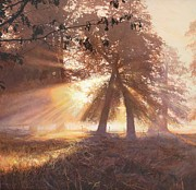 Amazing Sunset Paintings - Dunham by Helen Parsley