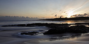 Embleton Prints - Dunstanburgh Castle Sunrise Print by David Pringle