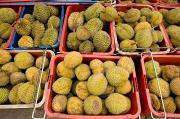 Durian Prints - Durian Fruits At An Outdoor Market Print by Tim Laman