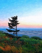 Dusk At Agate Beach 2 Print by Alice Martin