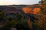 Golden Hour Framed Prints - Dusk at Colorado National Monument Framed Print by Larry Ricker