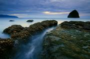 Seaweed Photos - Dusk at Kiwanda  by Mike  Dawson