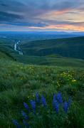 Butte Prints - Dusk over the Yakima Valley Print by Mike  Dawson