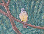 Flycatcher Painting Originals - Dusky Flycatcher by Judith Zur