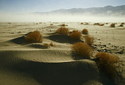 Owens Valley Art - Dust Blows Off Owens Lake, Dry by Gordon Wiltsie