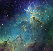 Molecular Clouds Prints - Dust Columns As Part Of The Melotte 15 Print by Don Goldman