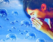 Allergy Posters - Dust Mite Allergy, Conceptual Artwork Poster by Hannah Gal