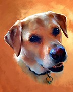 Lab Framed Prints - Dusty Labrador Dog Framed Print by Robert Smith