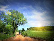Sunlight Art - Dusty road on a beautiful spring day by Sandra Cunningham