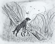 Duck Hunting Drawings - Dustys Rock by Stan McDaniel