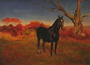 Dutch Warmblood Paintings - Dutch by Sara  Elizabeth Gregory