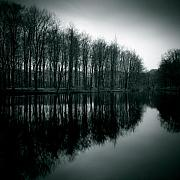 Pond Reflection Prints - Dutch Waters Print by David Bowman