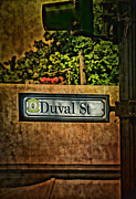 Flypaper Textures Photos - Duval Street by Anne Rodkin