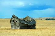 Mario Brenes Simon Metal Prints - Dying Old Barn Metal Print by Mario Brenes Simon