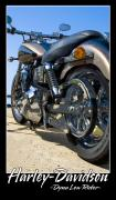 Harley Davidson Photos - Dynamic by Ricky Barnard