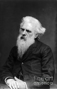 Figure Studies Posters - Eadweard Muybridge, English Photographer Poster by Photo Researchers