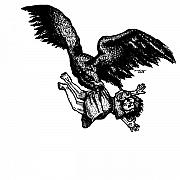 Little Girl Drawings Prints - Eagle Carrying Little Girl Print by Karl Addison