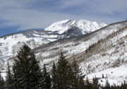 Mountaintop. Trees Prints - Eagle County Colorado Wintertime Print by Brendan Reals