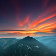 Sunset Photos - Eagle Eye by Evgeni Dinev