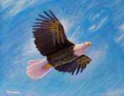 Flying Bird Paintings - Eagle Heart by Brian  Commerford