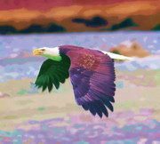 Eagle Paintings - Eagle In Air by Clarence Alford