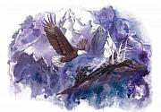 Evergreen Mixed Media Framed Prints - Eagle Majesty Framed Print by Sherry Shipley