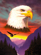 Wildlife Sunset Posters - Eagle Poster by MGL Studio - Chris Hiett