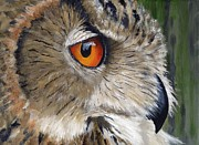 Yellow Beak Painting Posters - Eagle Owl Poster by Mike Lester